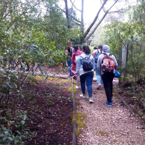 FÓRUM PARTICIPATIVO - Educar para a Literacia da Floresta em períodos de Pandemia